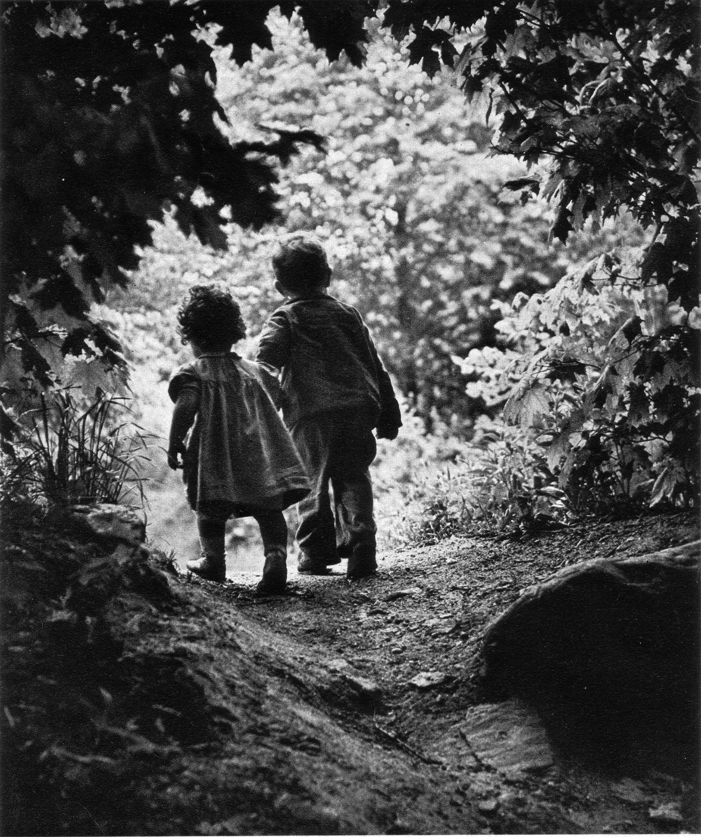 pictures i like a walk to the paradise garden w eugene smith 1946 shrine of dreams